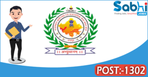 RSMSSB recruitment 2018 notification 1302 Informatics Assistant