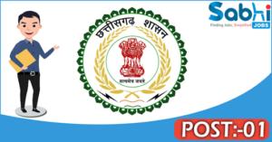 Government of Chhattisgarh recruitment 2018 notification 01 Development Associate