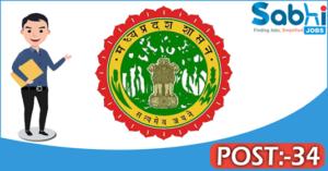 Government of Madhya Pradesh recruitment 2018 notification 34 Specialist, Senior Consultant