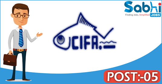 CIFA recruitment 05 Field Assistant, Senior Research Fellows