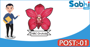 NRCO recruitment 2018 notification Apply for 01 Young Professional