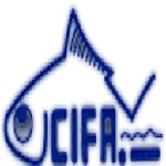 CIFA recruitment