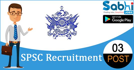 SPSC recruitment 03 Assistant Programmer