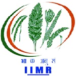 IIMR recruitment 2019