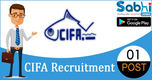 CIFA recruitment 01 Senior Research Fellow