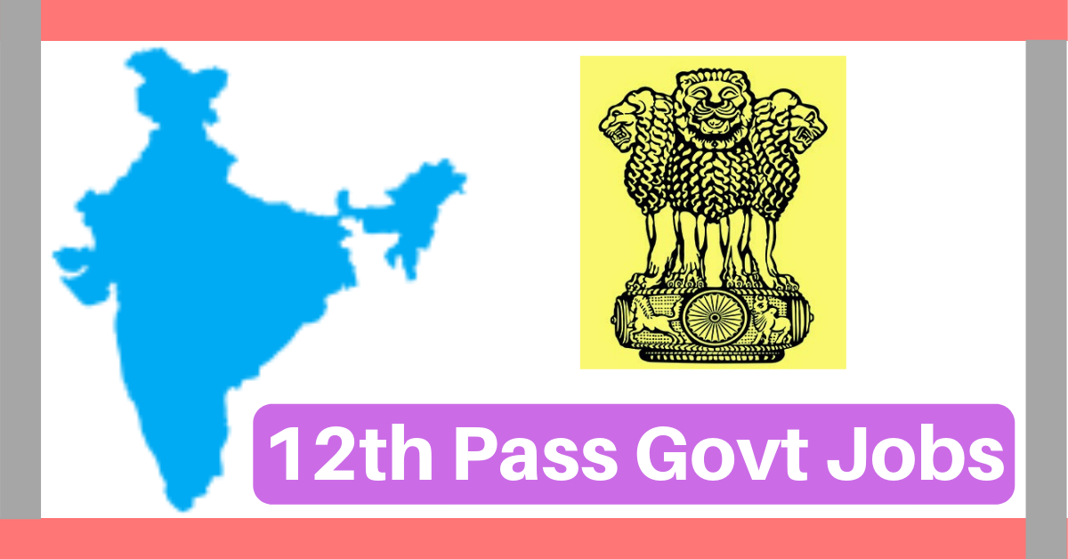 12th P Govt Job 2020 Apply Online 14,289 Vacancies After ... Latest Govt Job Form on church jobs, railway jobs, hr jobs, private sector jobs, law jobs, english jobs, industry jobs, physics jobs,