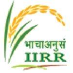 IIRR recruitment